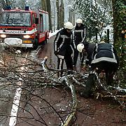 Brandweer ruimt een ijzel afgebroken tak op de Naarderstraat Huizen