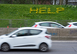 "© Licensed to London News Pictures; 29/03/2021; Bristol, UK. An environmental art piece, ""Help"", spelt out with spring daffodils is seen on a grass bank by the M32 close to central Bristol. The piece was designed by a local artist and garden designer Tim Robertson who with volunteers planted the Narcisii bulbs last year in some 'guerilla gardening'. The piece is intended as an SOS call from nature to draw attention to the current climate crisis including the impact of traffic pollution. Photo credit: Simon Chapman/LNP."