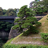 Asia, Japan, Tokyo. Obscure view of the Imperial Palace and gardens.