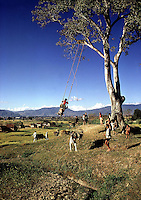 Rural scene near village in Nepal. 1969. Photographed by Terry Fincher