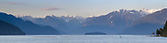 Panorama view of Pitt Lake near sunset with Osprey Mountain (right) and other peaks from the Garabaldi Ranges in the background.  Photographed from the Katzie Loop trail in Pitt Meadows, British Columbia, Canada.