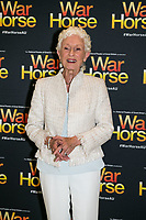 Benita Collings at the opening night of War Horse, at the Lyric Theatre, Star City on February 18, 2020 in Sydney, Australia