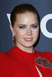 Amy Adams attends The 'VICE' Premiere in Paris, France on February 07 ,2019 in Paris, France.