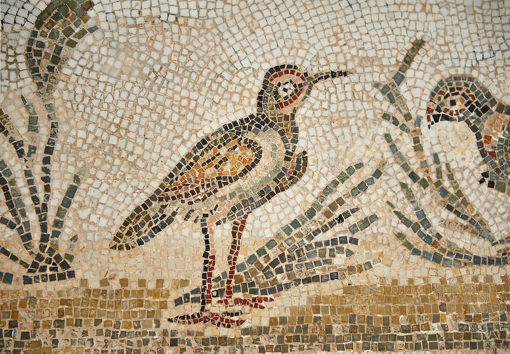 Picture of a Roman Dionysiac mosaics design depicting masks and birds, from the ancient Roman city of Thysdrus. 3rd century AD, House of Silenus. El Djem Archaeological Museum, El Djem, Tunisia. .<br /> <br /> If you prefer to buy from our ALAMY PHOTO LIBRARY Collection visit : https://www.alamy.com/portfolio/paul-williams-funkystock/roman-mosaic.html . Type - El Djem - into the LOWER SEARCH WITHIN GALLERY box. Refine search by adding background colour, place, museum etc<br /> <br /> Visit our ROMAN MOSAIC PHOTO COLLECTIONS for more photos to download as wall art prints https://funkystock.photoshelter.com/gallery-collection/Roman-Mosaics-Art-Pictures-Images/C0000LcfNel7FpLI