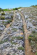 Misrah Ghar il-Kbir, Clapham Junction,  prehistoric cart ruts  tracked over rocky limestone surface, Siġġiewi, Malta