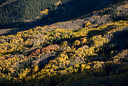 Capitol Peak and Capitol Creek trail in autumn near Snowmass, Colorado.