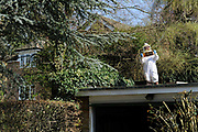 A man inspects part of his bee hive on the roof of his garage in Oxfordshire, England, 2010. The ancient art of beekeeping is enjoying a renaissance in Britain, fuelled partly by the desire to do something for the environment.