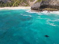 Aerial view of two manta rays off Island Nusa Penida, Indonesia.