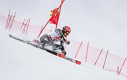 19.12.2018, Saalbach Hinterglemm, AUT, FIS Weltcup Ski Alpin, Riesenslalom, Herren, 1. Lauf, im Bild Leif Kristian Nestvold-Haugen (NOR) // Leif Kristian Nestvold-Haugen of Norway in action during his 1st run of men's Giant Slalom of FIS ski alpine world cup. Saalbach Hinterglemm, Austria on 2018/12/19. EXPA Pictures © 2018, PhotoCredit: EXPA/ JFK