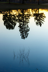 Reflections and silhouettes of trees on edge of Great Trinity Forest at Keeton Park Golf Course, Dallas, Texas, USA