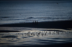© Licensed to London News Pictures. 25/12/2015. Tynemouth, UK. Runners at first light before Sunrise on Christmas day on Longhands beach in Tynemouth, north east England. Photo credit: Ben Cawthra/LNP