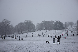 © Licensed to London News Pictures. 24/01/2021. London, UK. Snow falls on Greenwich Park in southeast London. Photo credit: Rob Pinney/LNP