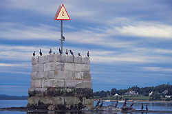 Hosmer Ledge Monument off Hospital Island, Castine, Maine, US