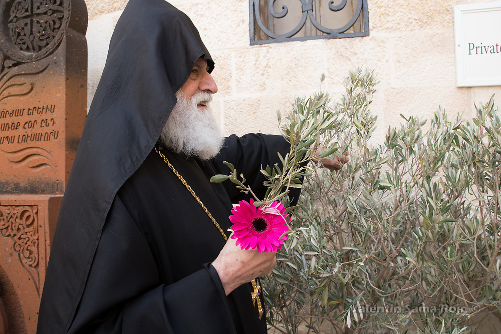 Jerusalem, Israel. 1st April, 2018. A high Armenian priests carrying a pink daisy and cutting small pieces of an olive branch after the Armenian Palm Sunday procession. © Valentin Sama-Rojo.