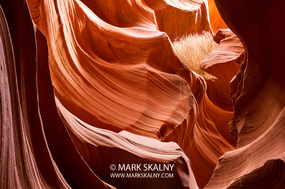 Antelope Canyon red sandstone wall abstract pattern. Page, Arizona. Lake Powell Navajo Tribal Park.