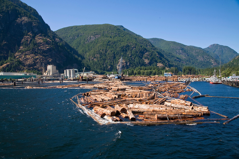 Logging, Gold River, Vancouver Island, British Columbia, Canada