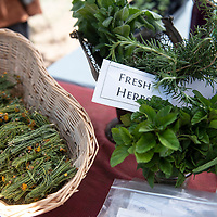 Apple mint, lime mint, rosemary and cota for sale from  WhooVille Farm at the Candy Kitchen Farmers Market, Wednesday, July 10 in Candy Kitchen. The farmers market is every Wednesday from 10 a.m. to 1 p.m.