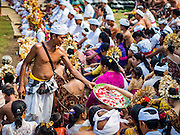 22 JULY 2016 - TENGANAN DUAH TUKAD, BALI, INDONESIA: A Hindu priest hands out flower petals during the prayers after the pandanus fights in the Tenganan Duah Tukad village on Bali. The ritual Pandanus fights are dedicated to Hindu Lord Indra. Men engage in ritual combat with spiky pandanus leaves and rattan shields. They usually end up leaving bloody scratches on the combatants' backs. The young girls from the community wear their best outfits to watch the fights. The fights have been traced to traditional Balinese beliefs from the 14th century CE. The fights are annual events in the Balinese year, which is 210 days long, or about every seven months in the Gregorian calendar.    PHOTO BY JACK KURTZ