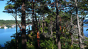 Fossil Bay, Sucia Island, San Juan Islands, Washington State