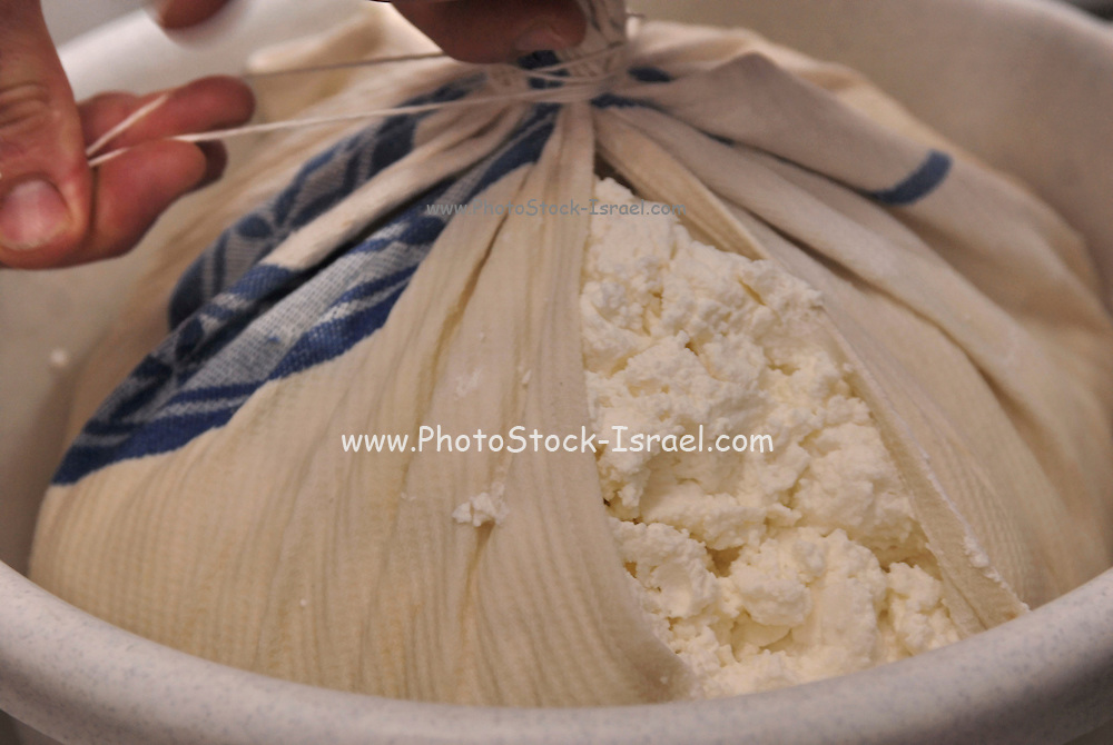 Home made white cheese Separating the Curds from the whey