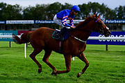 Mister Parma ridden by David Probert and trained by Ian Williams ridden in the Kentucky Derby On Sky Sports Racing Handicap - Mandatory by-line: Ryan Hiscott/JMP - 24/08/20 - HORSE RACING - Bath Racecourse - Bath, England - Bath Races