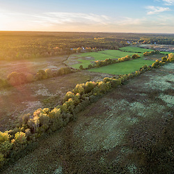Drone view of grasslands in Middleborough and Halifax, Massachusetts.