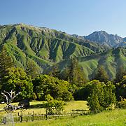 Verdant green hills in Big Sur.