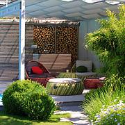 Modern Garden 1219