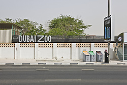 Animals at the Dubai Zoo in 45 degree Celsius heat