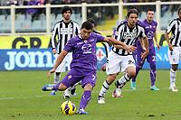 """Il GOL del 2-0 su rigore di David Pizarro (Fiorentina)<br /> Goal Celebration David Pizarro (Fiorentina)<br /> Firenze 16/12/2012 Stadio """"Artemio Franchi""""<br /> Serie A 2012/2013<br /> Football Calcio Fiorentina Vs Siena<br /> Foto Insidefoto Luca Pagliaricci"""