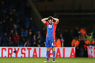 Scott Dann of Crystal Palace looks dejected after the final whistle. Premier League match, Crystal Palace v Manchester city at Selhurst Park in London on Saturday 19th November 2016. pic by John Patrick Fletcher, Andrew Orchard sports photography.