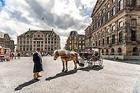 Dam Square est la place la plus connue d'Amsterdam<br /> Ses batiments remarquables et des evenements frequents en font l'un des endroits les plus connus et les plus importants de la ville et le pays.<br /> <br /> Its notable buildings and frequent events make it one of the most well-known and important locations in the city and the country.