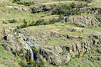 Parque Nacional Los Glaciares, Patagonia, Argentina 2008