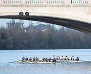 Mortlake, Greater London. 11th December 2019, Oxford Women's University Trial Eights, named, Morley and Brown,  Morely: [White Sleeves], and Brown under Chiswick Bridge after the Trail won by Morely, Putney to Mortlake, River Thames, [Mandatary Credit: Peter SPURRIER/Intersport Images],<br /> <br /> Morely: Cox: Costanza Levy, Stroke: Amelia Standing, 7: Tina Christmann, 6: Georgina Grant 5: Martha Birtles, 4: Fijnanda van Klingeren, 3: Emily Davenport, 2: Hazel Wake, Bow: Hannah Morrisey,<br /> <br /> <br /> Brown: Cox: Michael Hobley, Stroke: Isobel Dodds, 7: Lucy Gillbanks, 6: Katie Anderson, 5: Katherine Maitland, 4: Renée Koolschijn<br />  3: Kaitlyn Dennis, 2: Megan Hanson, Bow: Elsebine Bolier,