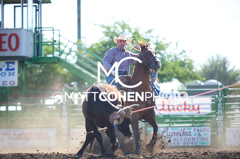 Team roper Dugan Kelly of Paso Robles, CA competes at the Livermore Rodeo in Livermore, CA<br /> <br /> <br /> UNEDITED LOW-RES PREVIEW<br /> <br /> <br /> File shown may be an unedited low resolution version used as a proof only. All prints are 100% guaranteed for quality. Sizes 8x10+ come with a version for personal social media. I am currently not selling downloads for commercial/brand use.