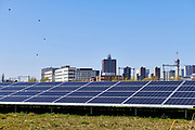 A field with solar panels with on the background the skyline of the dutch city The Hague.