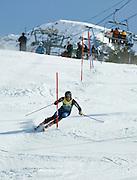 Mens Slalom, 2007 U.S. Alpine Championships at Alyeska, Resort, Alaska.