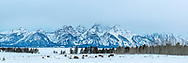 A winter day in Jackson Hole.<br /> <br /> This Panorama Print can be printed 2-foot by 6-foot at 217-DPI native, or 8-foot wide by 2.5 foot tall at 163 Native DPI.