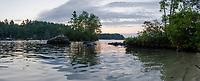 Island Life ~ Lake Winnipesaukee.  Hanging out with the eagles.  ©2017 Karen Bobotas Photographer