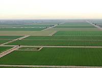 Aiereal photograph of the Imperial Valley's faming industry, Californina