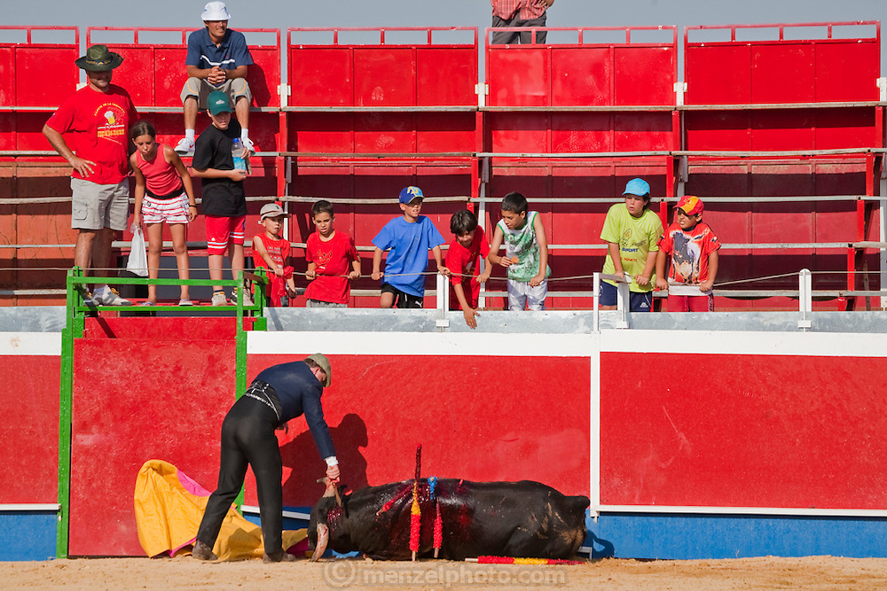 A matador gives a final stab to a bull he just slaughtered at a bullfighting festival in Campos del Rio, near Murcia, Spain.