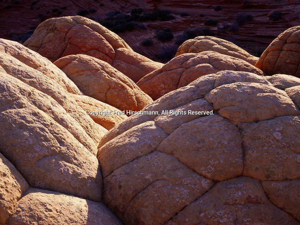 Navajo Sandstone jointing pattern, Paria Vermilion Cliffs Wilderness, Arizona.