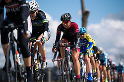 In one long line through the strong Zeeland winds at Omloop van Borsele 2016. A 139 km road race starting and finishing in 's-Heerenhoek, Netherlands on 23rd April 2016.