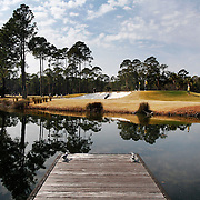 Charleston Southern's Jarrett Swan, 21, analyzes the green before attempting his chip from the bunker while shooting with USC Aiken's Kyle Godsman, and Elon's William DiIanni, on hole nine during the 2014 Wexford Plantation Intercollegiate on February 18, 2014.