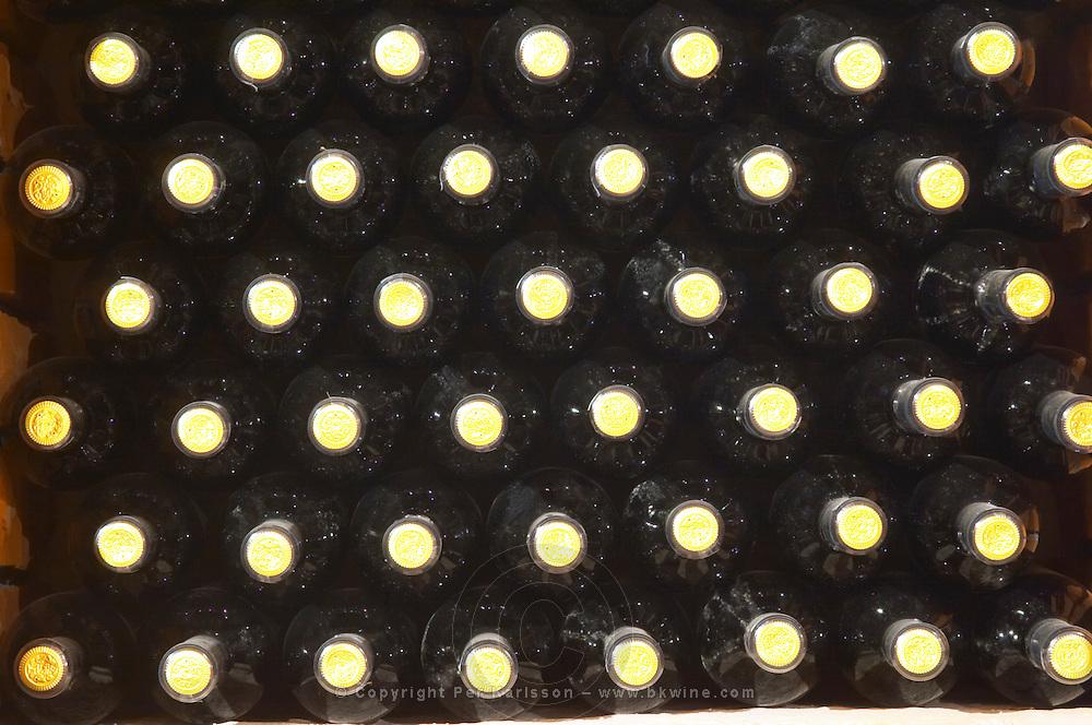 Wine bottles in square bins in the wine cellar. Detail of bottle necks. Matusko Winery. Potmje village, Dingac wine region, Peljesac peninsula. Matusko Winery. Dingac village and region. Peljesac peninsula. Dalmatian Coast, Croatia, Europe.
