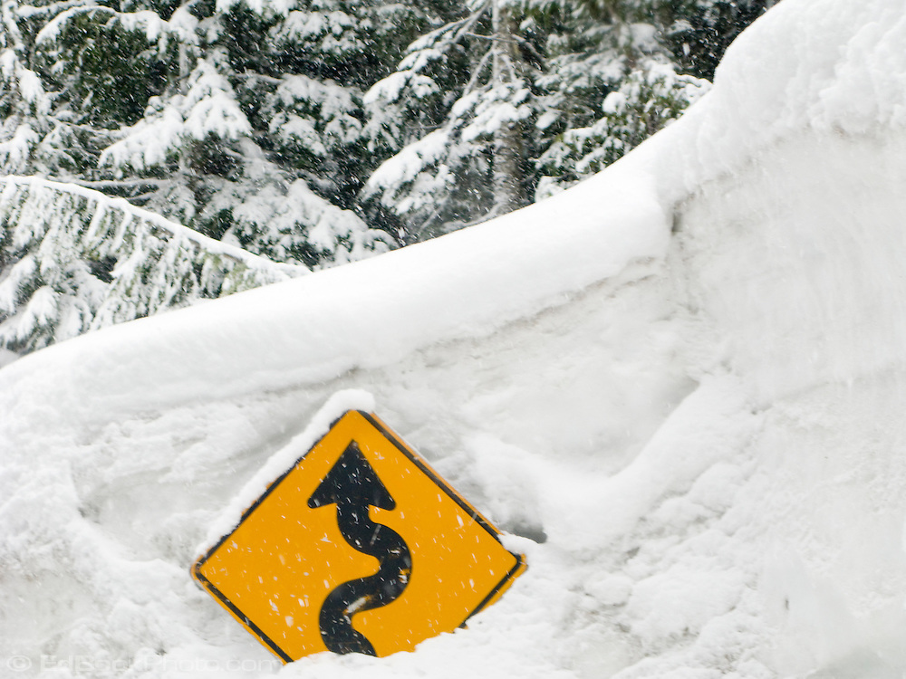 curvy road ahead sign sticking out of deep snow. Mount Rainier National Park, Washington, USA