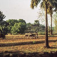 near Dhaka, Bangladesh.