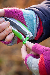 Adjusting the catch on some secateurs