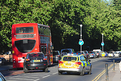 © Licensed to London News Pictures. 23/07/2018<br /> WOOLWICH, UK.<br /> Traffic chaos on Shooters Hill Road.<br /> Woolwich Common fire, Woolwich. Firefighters fighting the fire this evening.<br /> Photo credit: Grant Falvey/LNP
