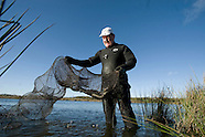 2008 Anglesey's Eel Man